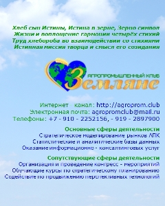 БАННЕР   Стратег   баннер1